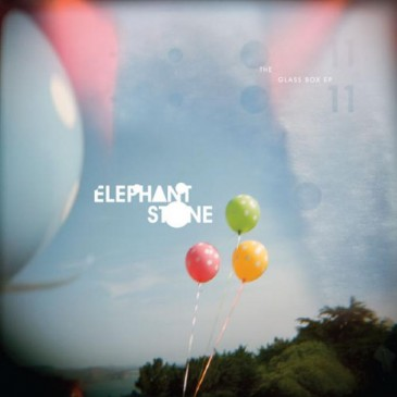 Elephant Stone - Glass Box