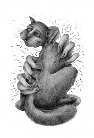 Prairie Cat || illustrated by Jenna Milsom