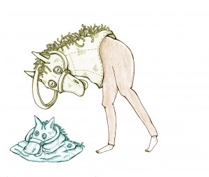 Phono Pony    Illustration by Eva Dominelli for Discorder Magazine