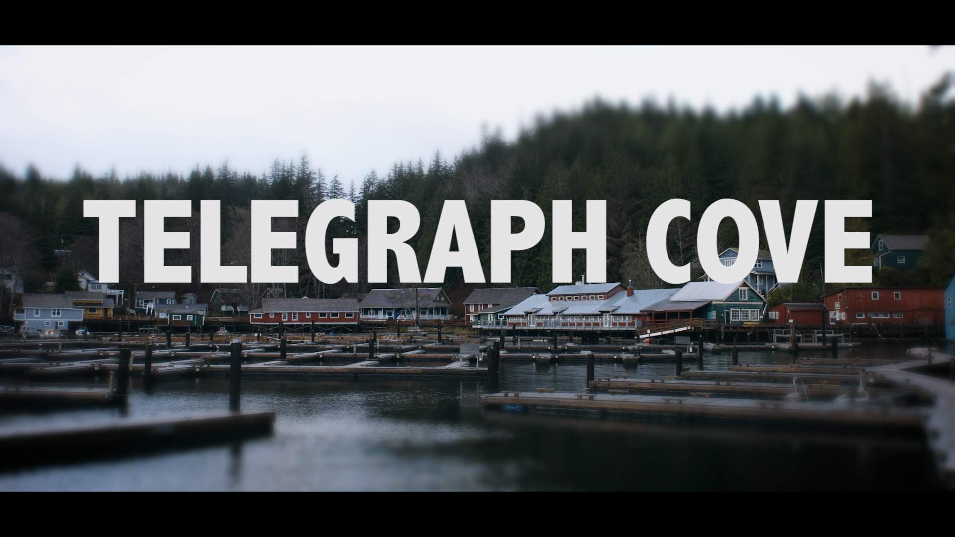 Telegraph Cove promo courtesy of Borrowtime Films