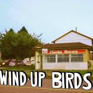 Wind-up Birds