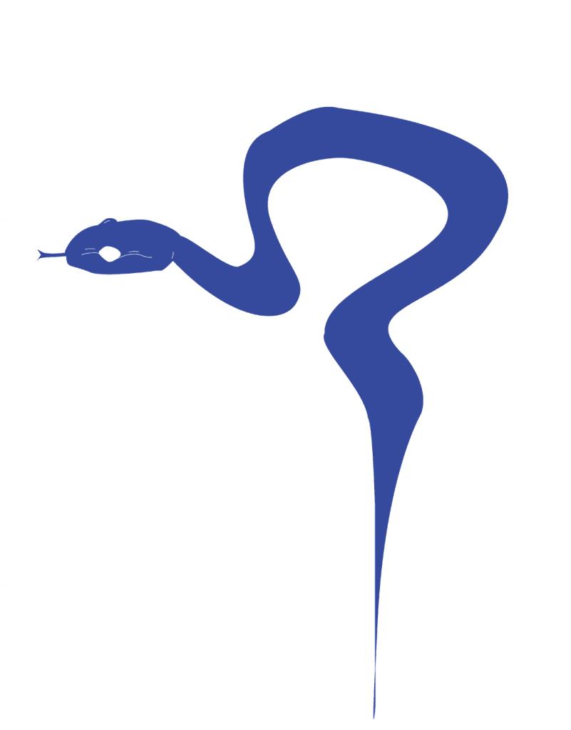 3.BLUE_snake_AlejandraSamaniego_forDiscorder_April2018