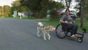 "a still from Olivia Dreisinger's ""Handler is Crazy"" of Banner running beside Koyote Moon."