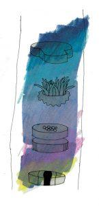 illustration by Sunny Nestler